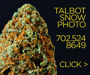 Talbot Snow Photo & Video